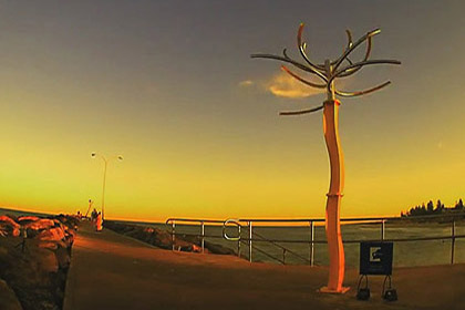 Cottesloe beach sculptures 2014